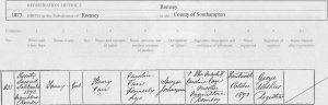 Fanny Carr 1873 Birth Certificate