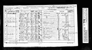 1871 census