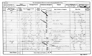 Joseph Newell 1861 Census